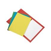 BRISTOL CONF. 50 CART.SEMPL. 25X34 200gr